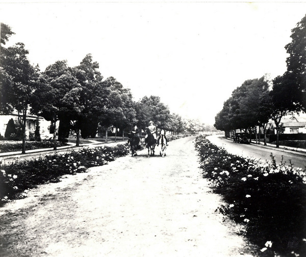 """PE's right-of-way along Rodeo Drive in 1932, where horses now carry """"passengers"""" that once rode the PE cars. Ralph Cantos Collection"""